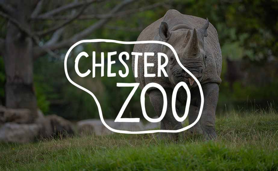 Off to @chesterzoo today with the families on Holiday at Byng House #bynghouse #familyholiday #Chesterzoo #charity #royalbritishlegion<br>http://pic.twitter.com/WCRYsLy0jU