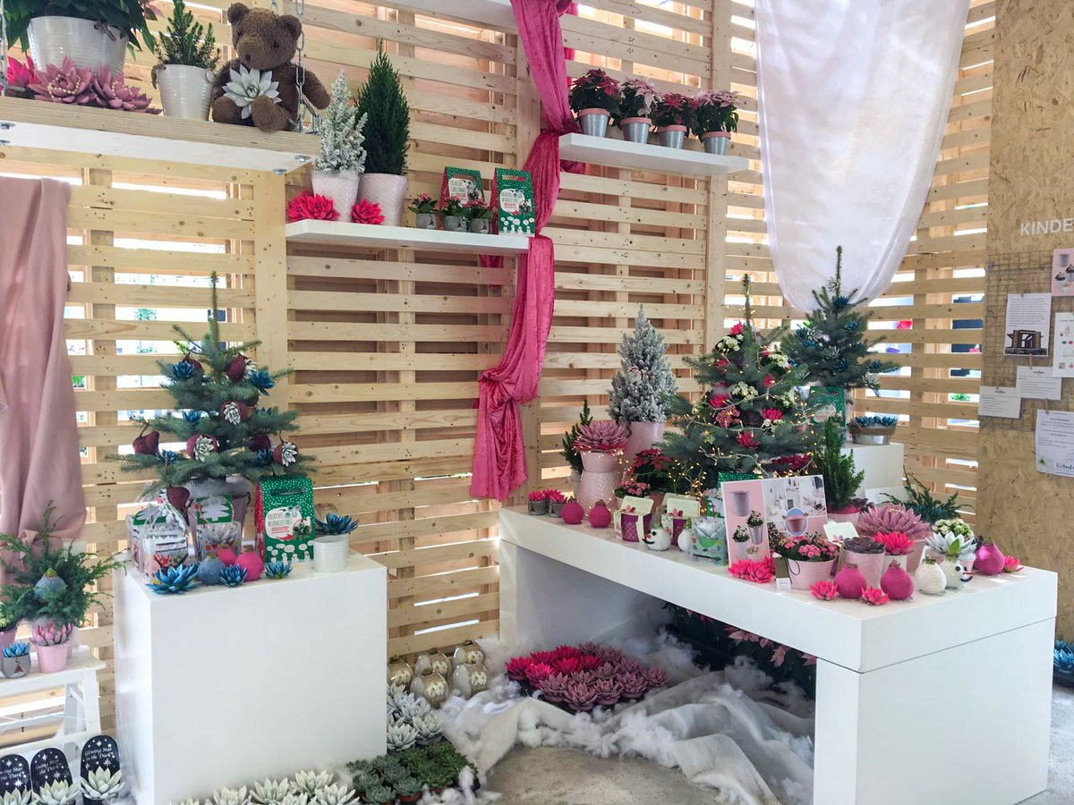 Creating beautiful displays with the House of Christmas Inspiration for the Plantarium fair #plantarium #christmas #trends @Dymak_Holland<br>http://pic.twitter.com/LvvDwfxaoo