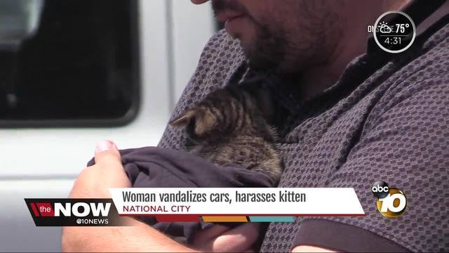 Woman vandalizes cars, harasseskitten