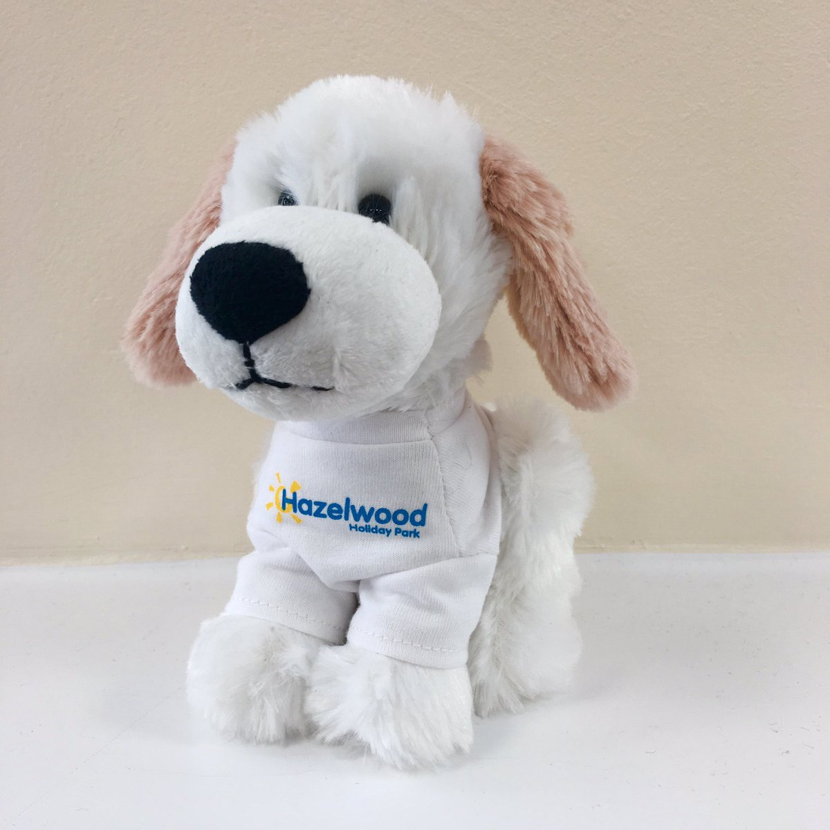 What do we think of this little fella? New @HazelwoodPark mascot - shall we place the order? #dogfriendly #holidays #dawlishwarren #devon<br>http://pic.twitter.com/gZUA73YV26