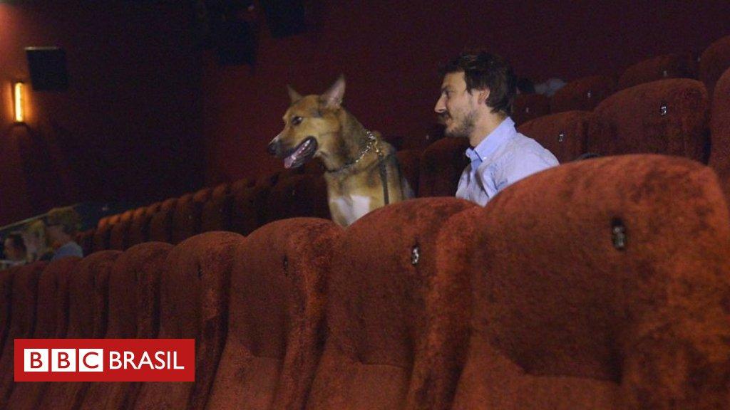 O cinema de Londres que recebe cachorros. https://t.co/FV7H3yvR4Z
