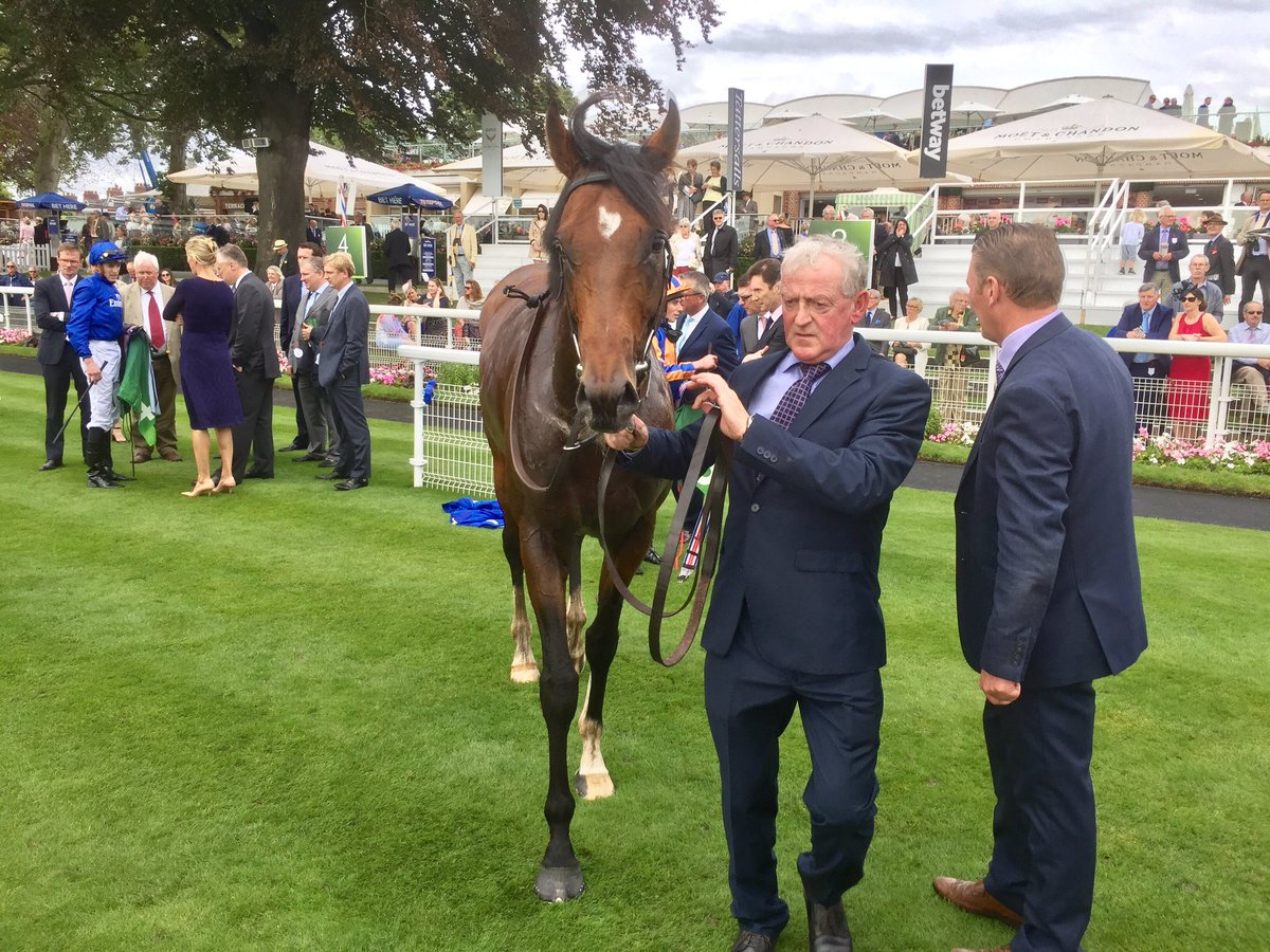 O'Brien on 2nd-placed Churchill: 'He didn't wilt and he left that Ascot run behind.' Mulling Irish Champion bid if ground good. #ClassicEbor
