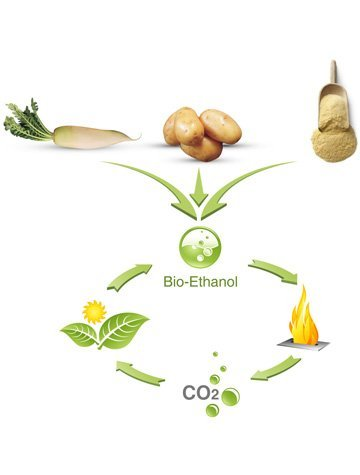 #DidYouKnow that #biofuel used in #ethanol #fireplaces is made of sugar cane, beets, and potatoes? #NowYouKnow <br>http://pic.twitter.com/HxbeuDonvV
