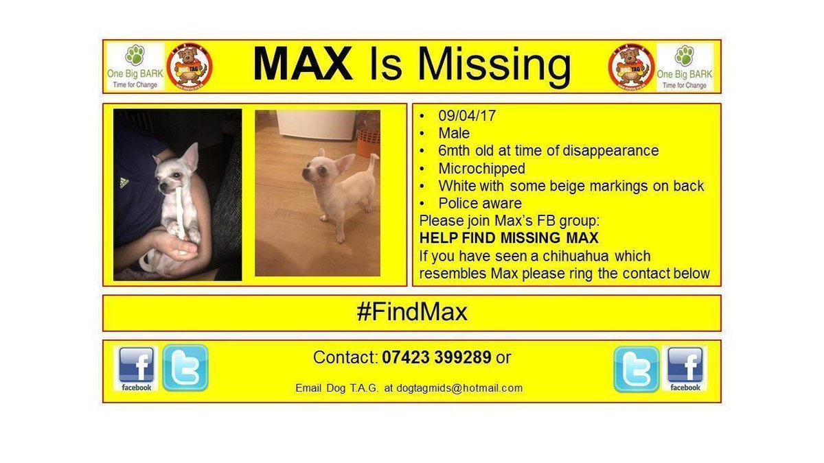 #findmax missing #chihuahua help find max #woof #woofwoof where are you?<br>http://pic.twitter.com/Xl6iWdP65a