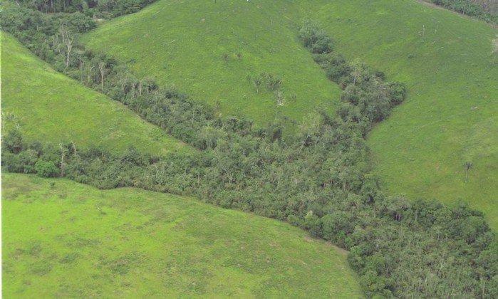 Temer extingue reserva para liberar exploração mineral na Amazônia. https://t.co/T6dsIzcxsu