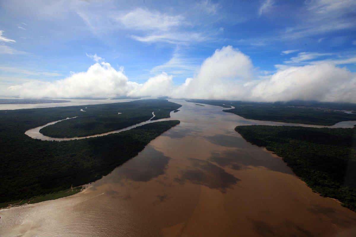 Desmatamento na Amazônia Legal diminui 21% em um ano → https://t.co/Ew7qgmtjBF
