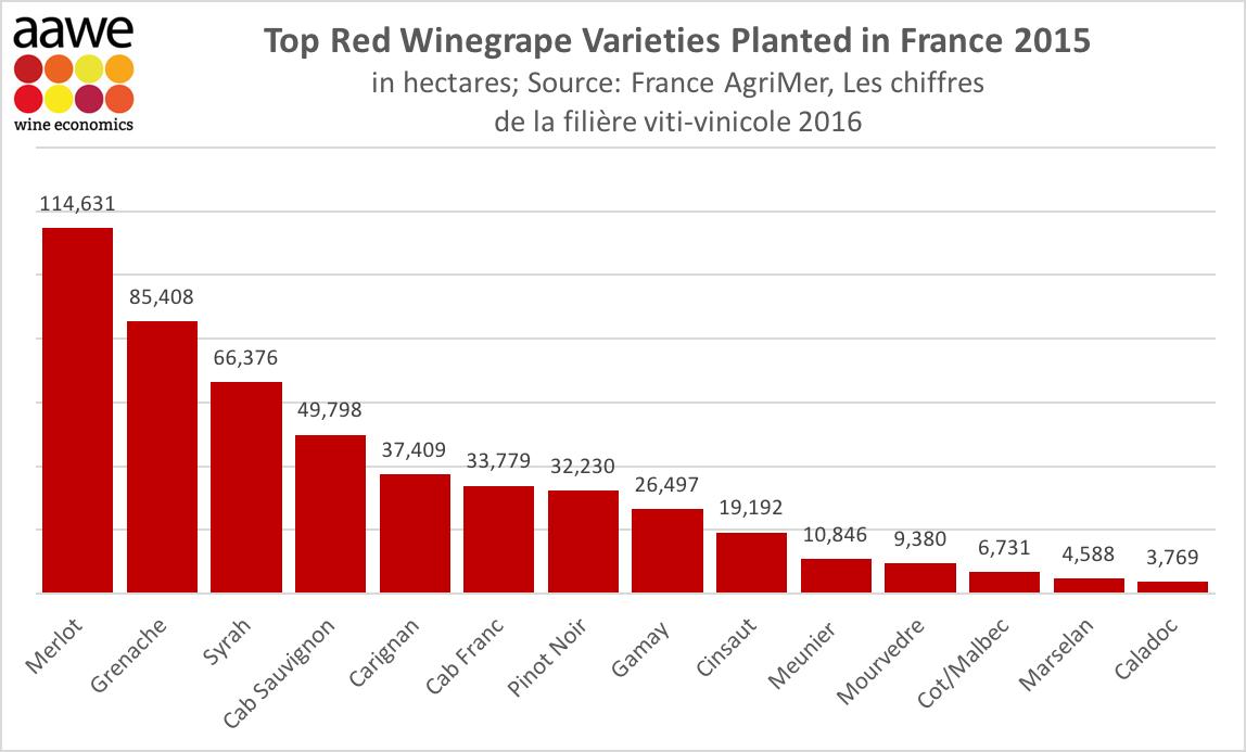 Top Red Winegrape Varieties Planted in #France 2015. @LPVien @PigottRiesling @RealWineGuru<br>http://pic.twitter.com/tbfalTyelx