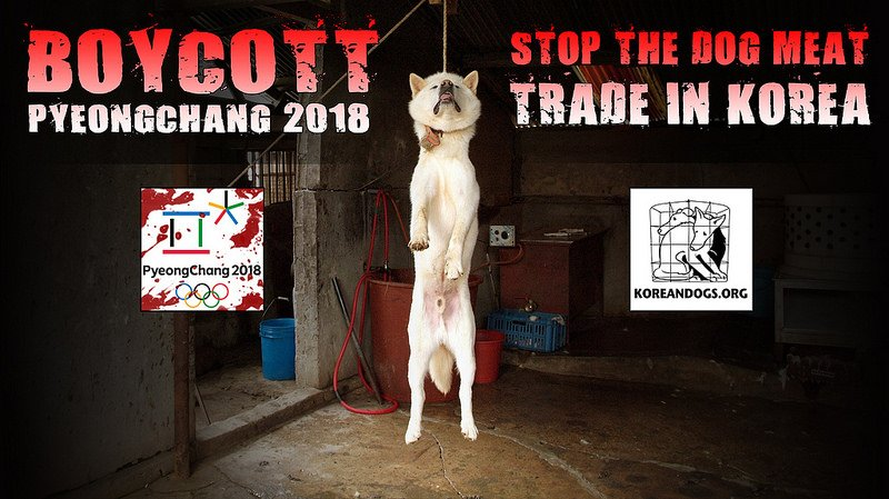 #MadAsHell Officials in #SouthKorea get dog &amp; cat meat restaurants 2 change signs B 4 #Olympics to trick #tourists   http://www. koreatimes.co.kr/www/nation/201 7/05/281_230094.html &nbsp; … <br>http://pic.twitter.com/e54KbrqRmR