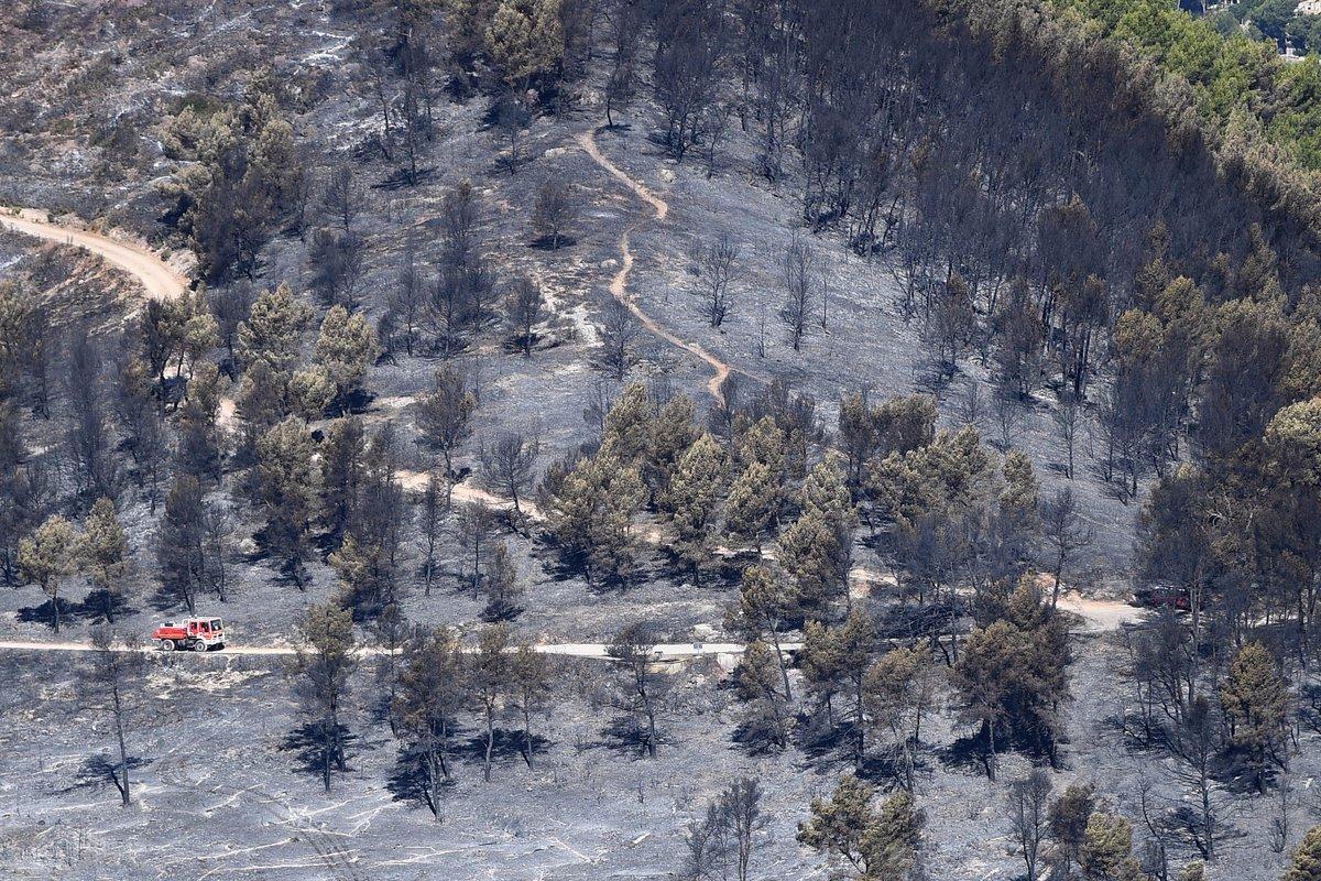 Feux: un homme soupçonné d'avoir provoqué 17 incendies interpellé https://t.co/KuGI0KLQbJ