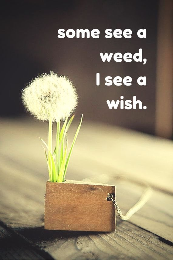 Always the wish xx #positivity #life #belief<br>http://pic.twitter.com/FpIlgWKt6s