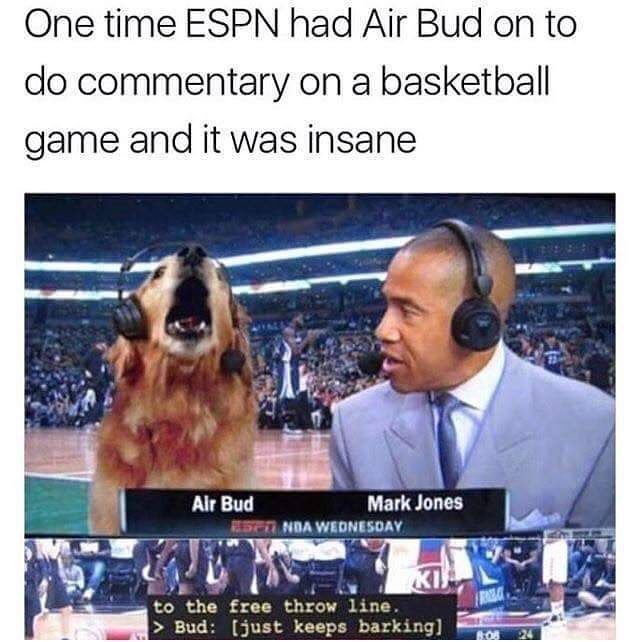 I&#39;m so upset that I somehow missed this!  #AirBud #doggo #what #saywhat #lololol #cutenessoverload #doglovers #lifechanging #ilovedogs<br>http://pic.twitter.com/x8rlduLCvm