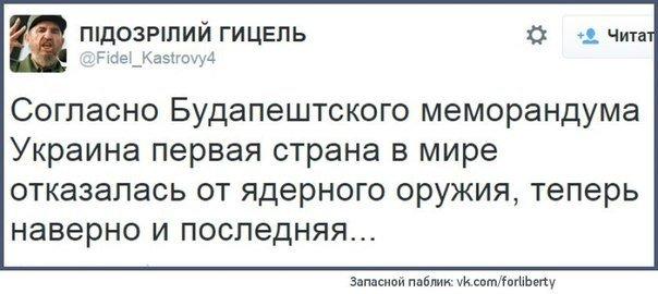 Аргументы против поставок оружия Украине не выдерживают критики: они базируются на мифах или устаревших оценках, - экс-посол США Хербст - Цензор.НЕТ 8403