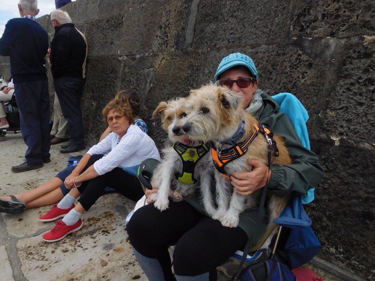 We #OJs escort Humums to gigboat racing @Lyme Regis ..Brilliant fun &amp; we got to swim !!! @LynnieYankee @borders6 @sdnunz @Smcheetham<br>http://pic.twitter.com/Eyx0m3Dx7v