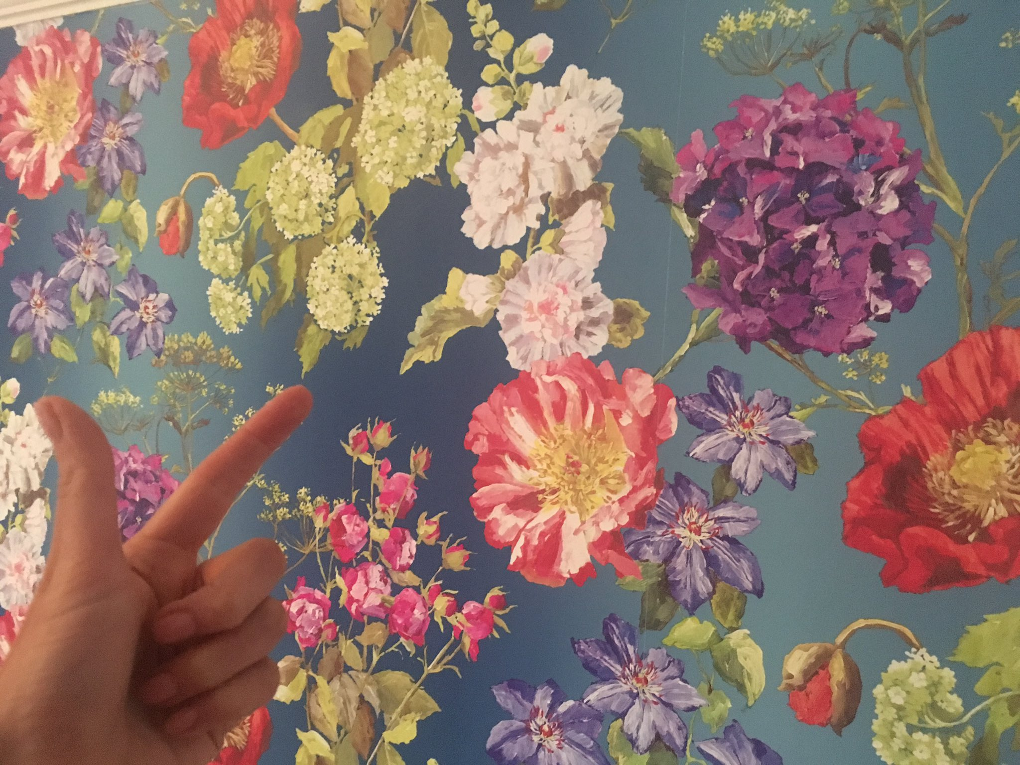 While the world goes bloody mad, I'd like to share my new floral wallpaper. https://t.co/o7HxDgPOQC