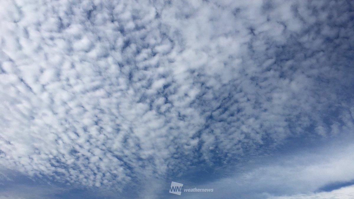 西日本では空が秋めき、うろこ雲が広がっています。ただ、この雲は天気下り坂のサイン… weathern…
