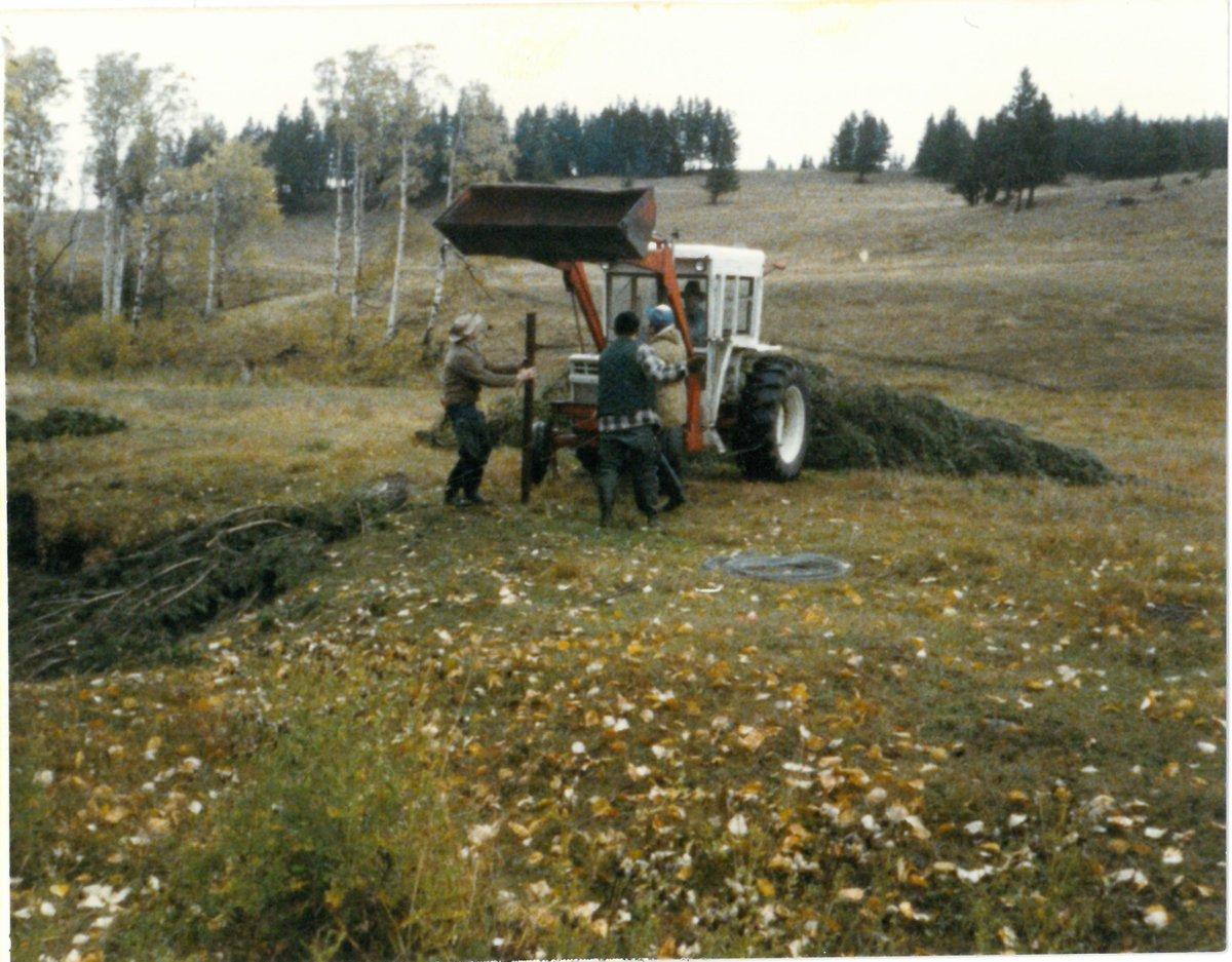 Celebrating #Canada150  TUC projects.1986, Crowsnest Pass, Alberta, Allison Creek Fish Habitat Enhancement. #habitat #Alberta #crowsnest #TUC<br>http://pic.twitter.com/0D6eDRXbep