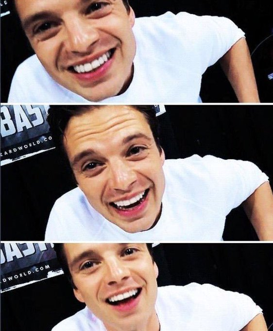 HAPPY BIRTHDAY TO SEBASTIAN STAN AKA ONE OF THE LOVES OF MY LIFE AKA A BEAUTIFUL SPECIMEN