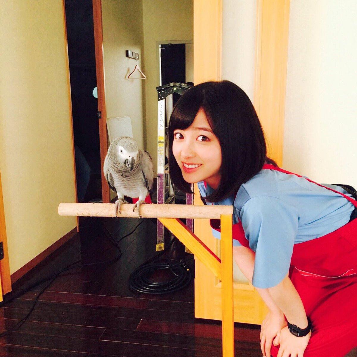 今日は最も賢い鳥と言われているヨウムが登場します! たい焼きの真実も解き明かされますよ〜✨ よる9時…