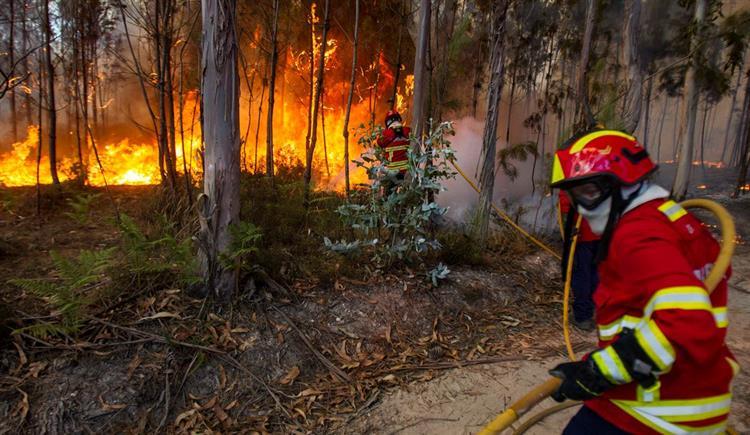 #Sociedade 'A culpa não é do tempo. A meteorologia não provoca incêndios' https://t.co/rtqpqttJ16 Em https://t.co/MDmhqgtnSp