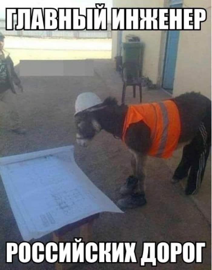 Главный инженер прикол картинки
