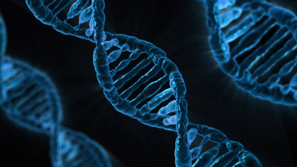Scientists infiltrate computer using #malware coded into #DNA  http:// bit.ly/2vpQiho  &nbsp;    #infosec #security #hacking #tech #news #science $FCT <br>http://pic.twitter.com/YVN5tJBYgI