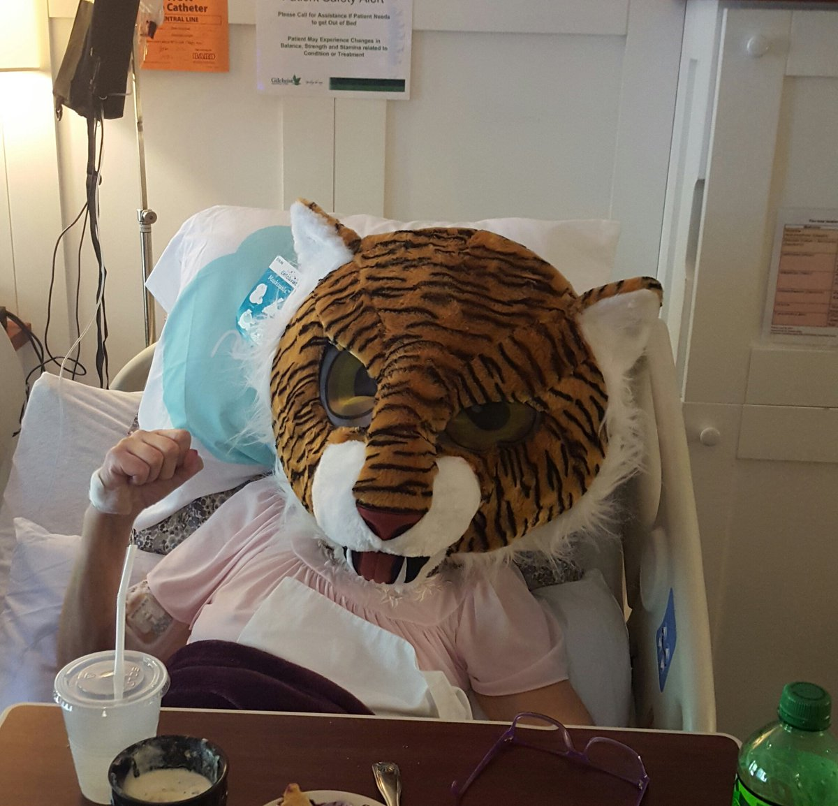 #maskimals My mom battling colon cancer and still has a sense of humor. #Toughestwomanonearth<br>http://pic.twitter.com/1CCWrtcX9c