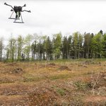 #Drones are planting an entire #forest from the sky  https://t.co/zhJFRD3CPa