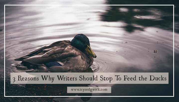 3 Reasons Why Writers Should Stop To Feed the Ducks https://t.co/8ww6p1dA9Q #MondayBlogs #writetip https://t.co/R7Ft5BLJFi