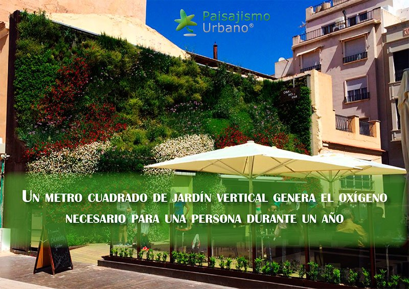 Sun, water, earth. Home and natural: The vertical garden - Presentation.