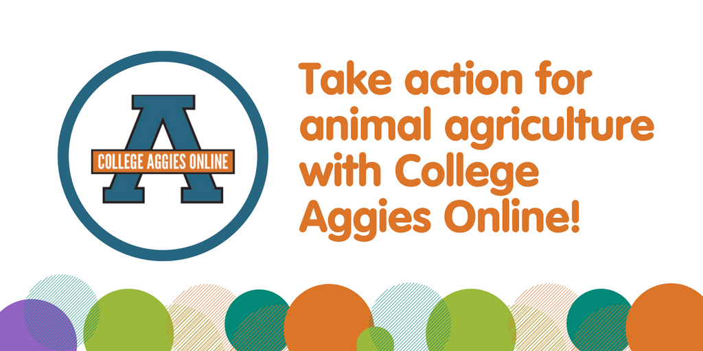 The College Aggies Online scholarship competition starts in less than one month! Sign up today -  http:// bit.ly/29ZCW3q  &nbsp;   #CAO17 <br>http://pic.twitter.com/Tis971e0uJ