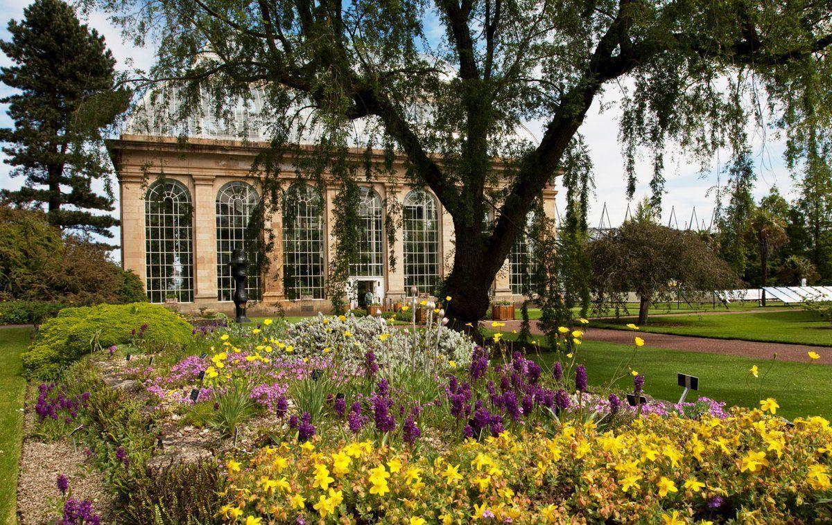 #LoveFlowers Garden: Visit the glass houses at @TheBotanics this Summer. @VisitScotland<br>http://pic.twitter.com/Vkt5FyGUbo