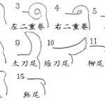 知ってました?日本犬の尻尾の名前と形はこんなにあるよ!