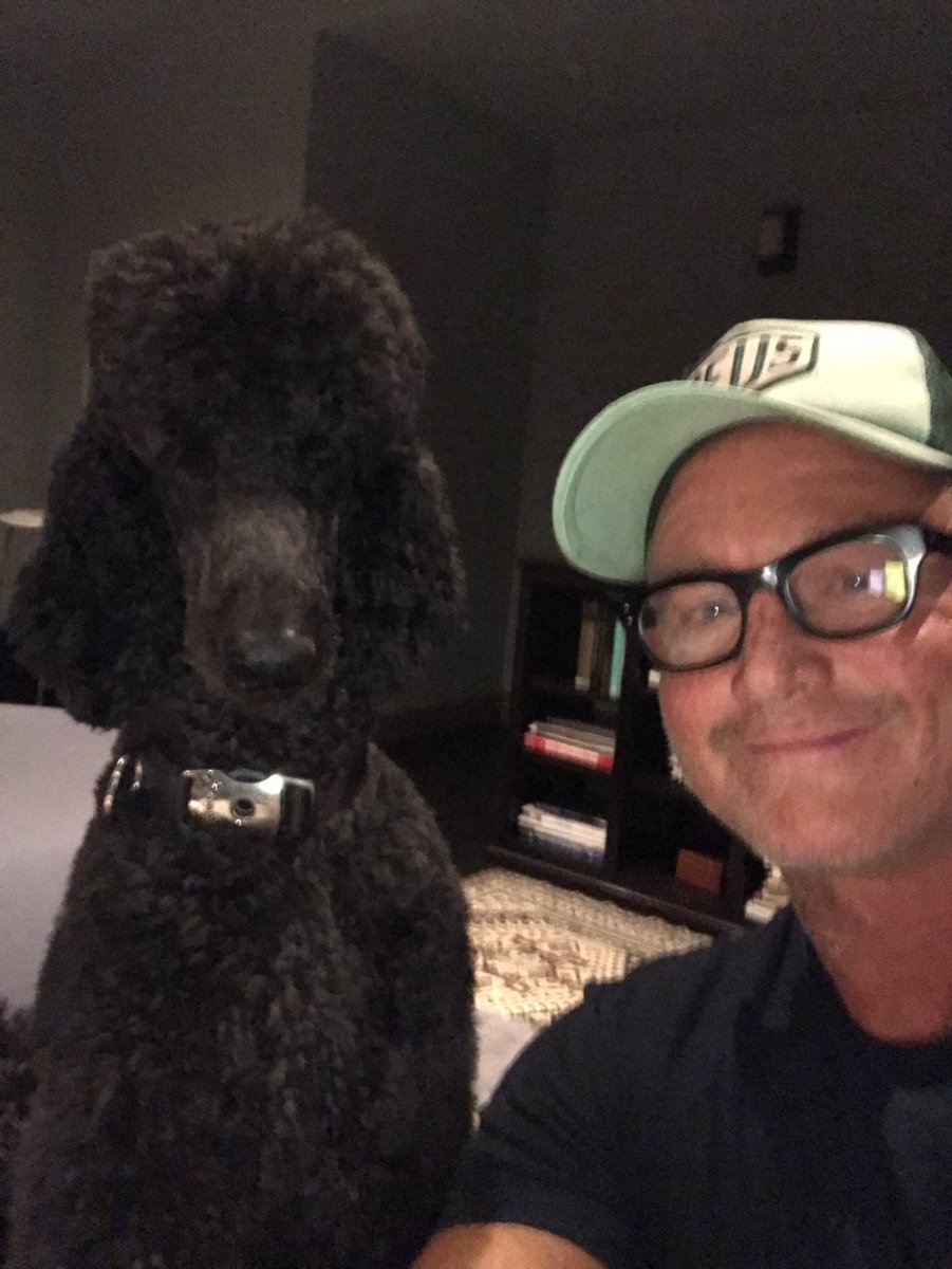 In good company with black #standardpoodle owners #laurenbacall #jessi...