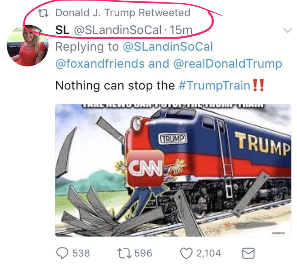 Please Retweet this. Trump, with hate in his heart, just RT'd and deleted THIS image, after a Domestic Terrorist ran down a woman with a car