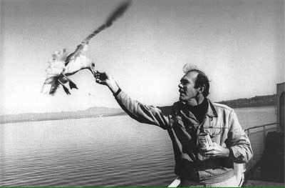 Ричард бах аудиокнига чайка скачать