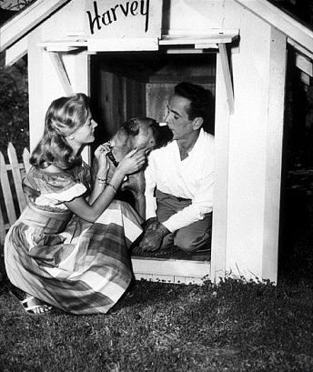 Photo: #HumphreyBogart - #LaurenBacall, and dog Harvey https://t.co/O3...