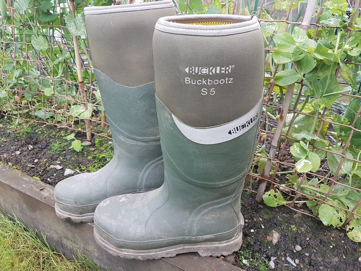 e42ea460f94 Buckler Boots on Twitter: