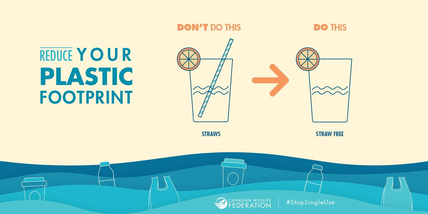 RT @PlasticOceans: Just say no to straws! #StopSingleUse https://t.co/X3qf9Sg36O