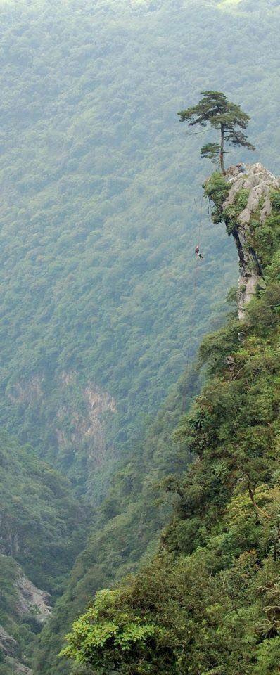 Uno de los mejores lugares para realiza #rappel en caída libre es la P...