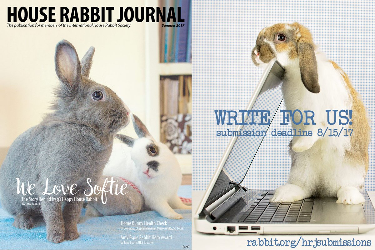 Famous Bunny Chews Wires Contemporary - Wiring Diagram Ideas ...