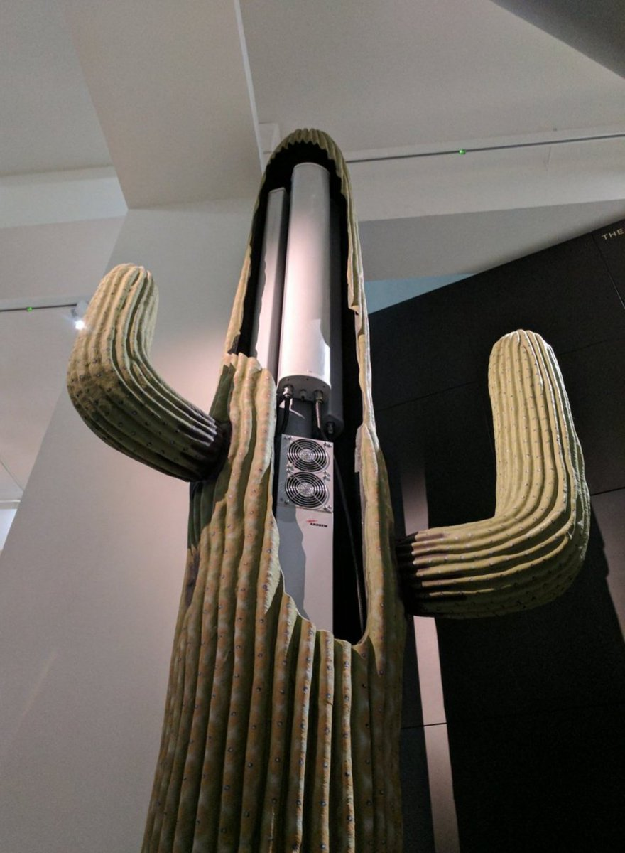 download An