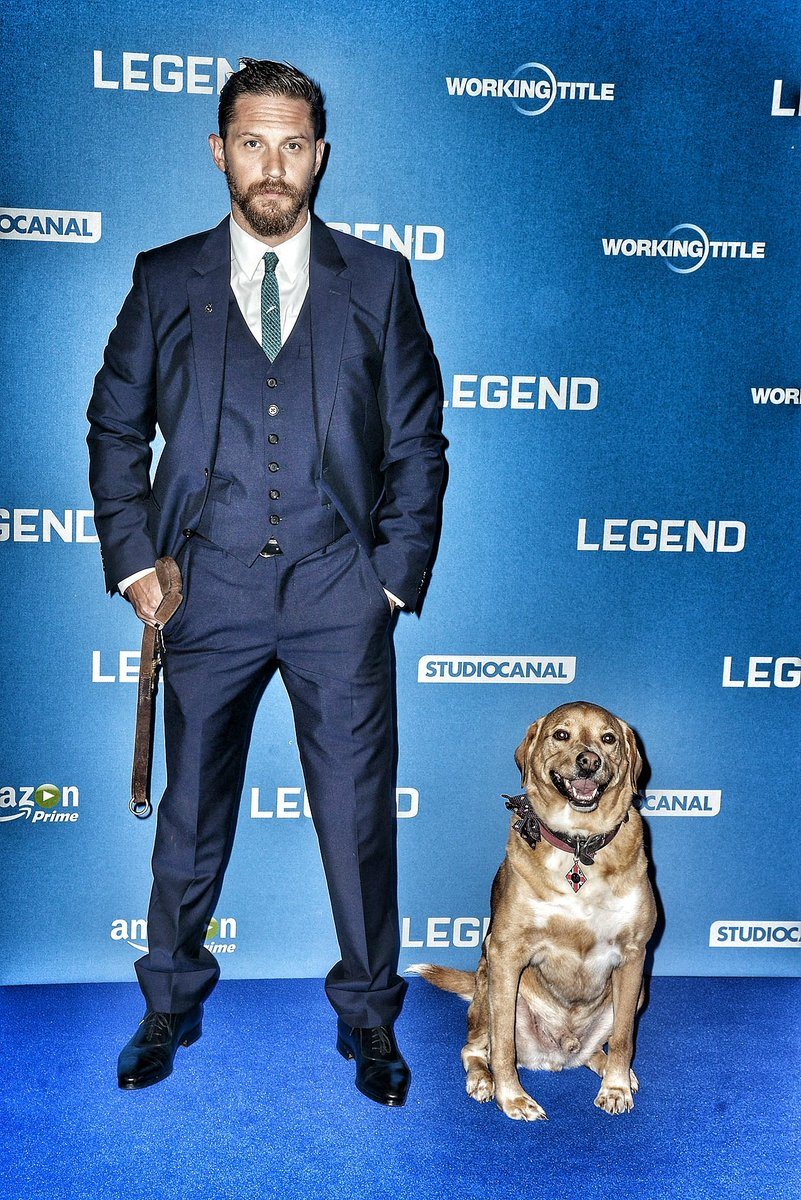 Good morning / afternoon Hardigans  have a great Wednesday #TomHardy #HunkDay  Woody  <br>http://pic.twitter.com/80VSOIBSvU