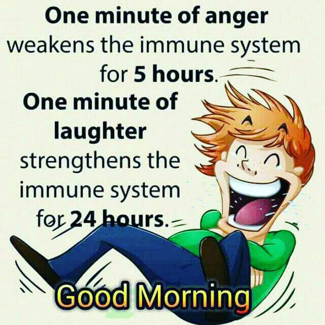 Good Morning All! Have a lovely day! #wednesday #motivation #life #lifequotes #lifelessons #anger #laughter #happiness #happywednesday<br>http://pic.twitter.com/XO3K4UvCRx