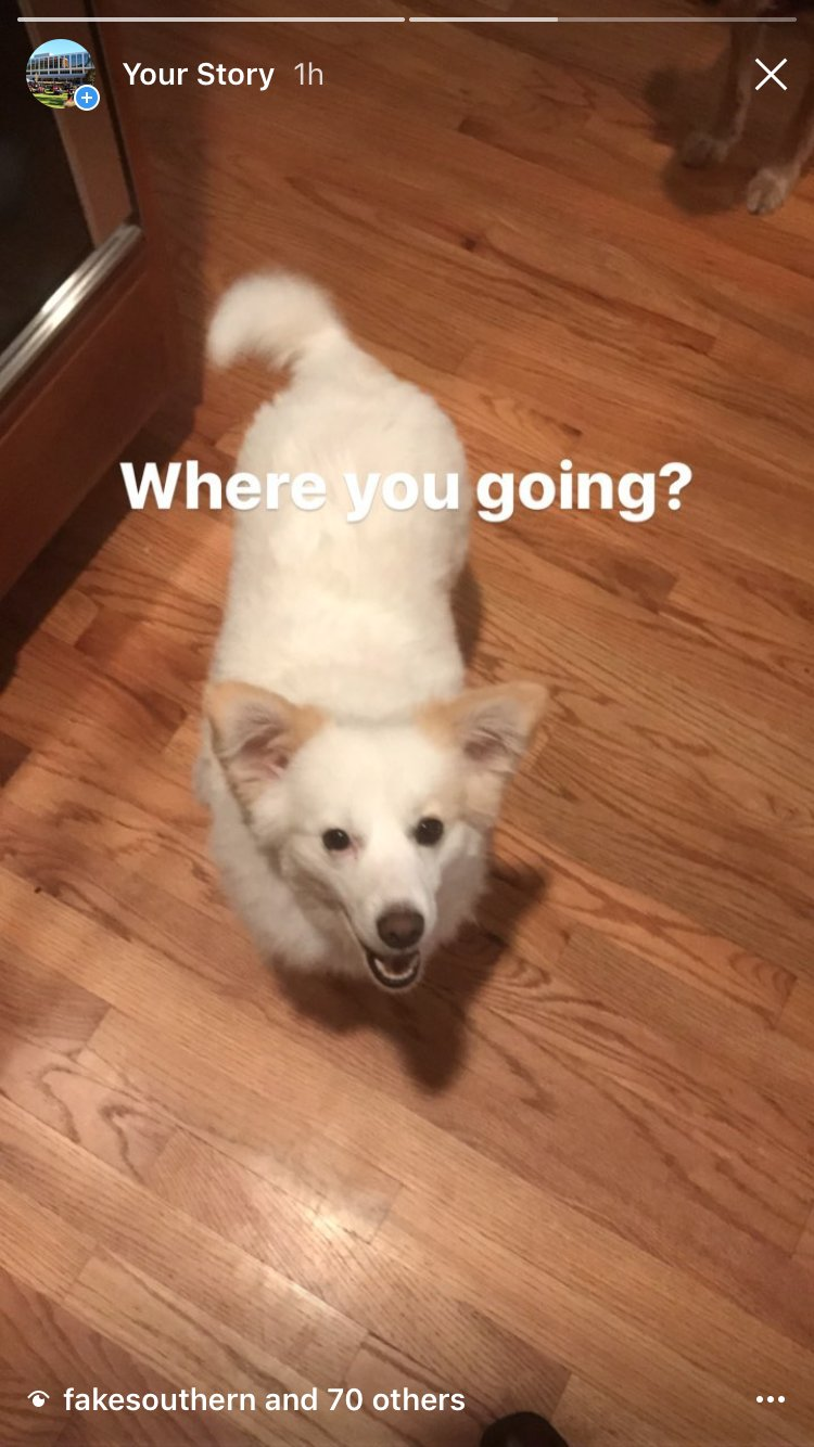 @GradyDeanUGA has taken over our Instagram account today.Look at My Story—there are pics of his dogs! #FindDeanDavis https://t.co/tFrQi23TU1 https://t.co/aivTrPiDnn