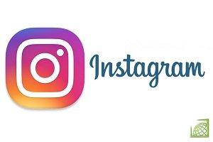 Приложение instagram для blackberry