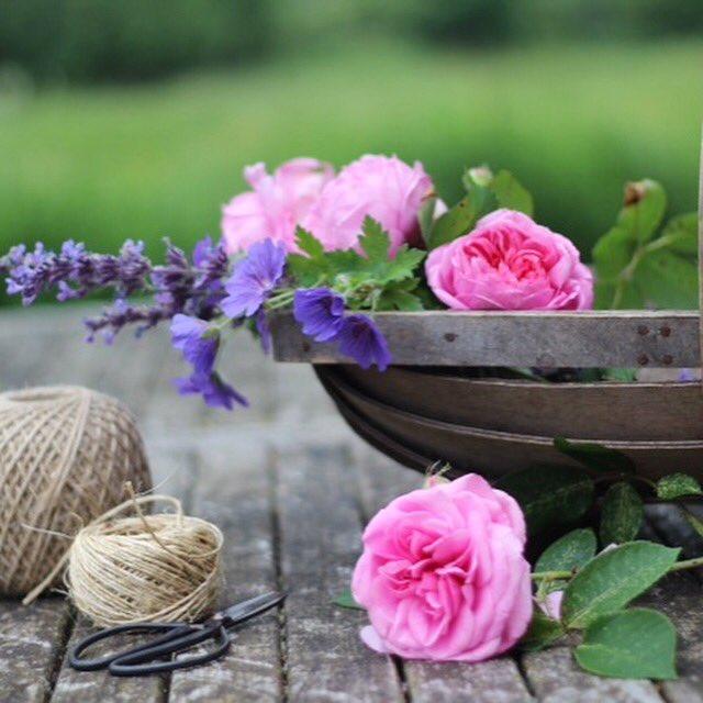 Making the most of the summer garden flowers #summerflowers #gardenflowers #gardening #summertime<br>http://pic.twitter.com/VMZUfELCiz