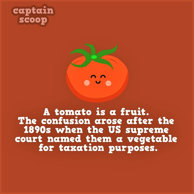 The great debate. What do you think? #fruit #vegetable #WednesdayWisdom<br>http://pic.twitter.com/CPNv08dcN6