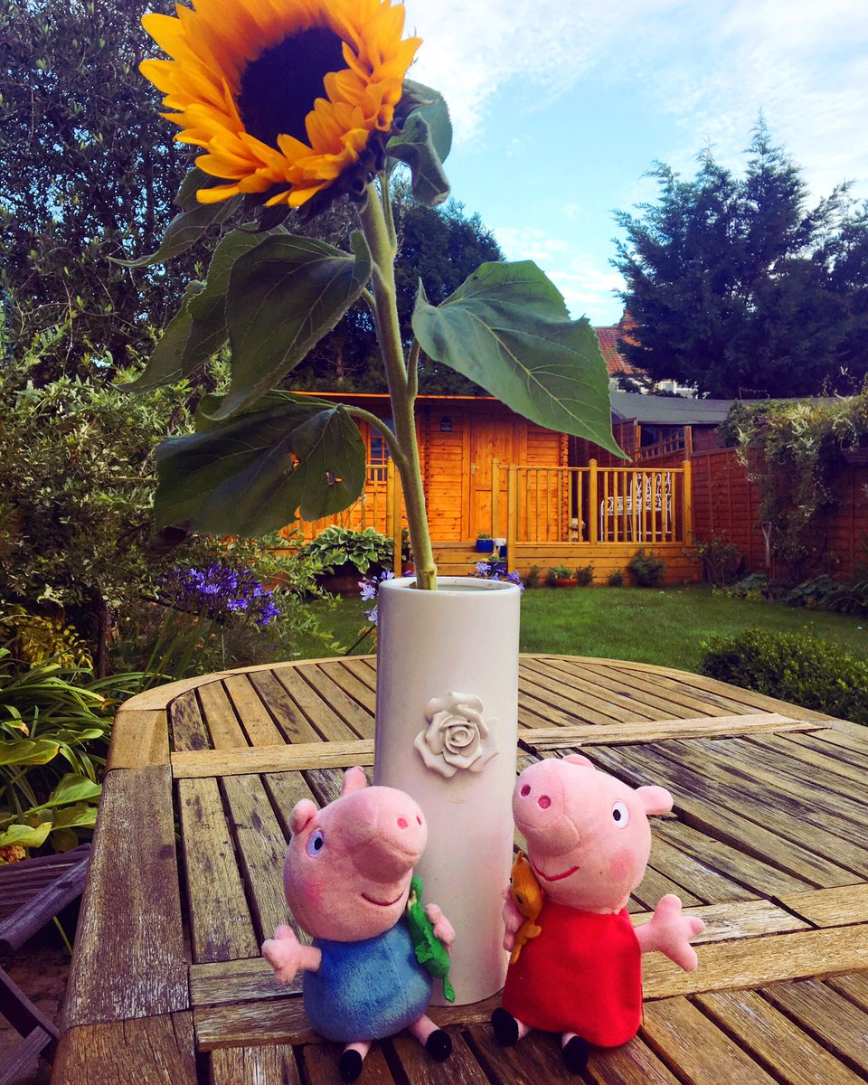 Peppa and George are having a great summer! We hope you are too! #peppapig #summer #sunflower #sunshine<br>http://pic.twitter.com/obRiy8rYV4