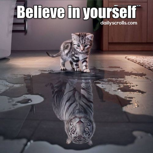 believe in yourself..  #motivation #quote<br>http://pic.twitter.com/J4lNReNaXy