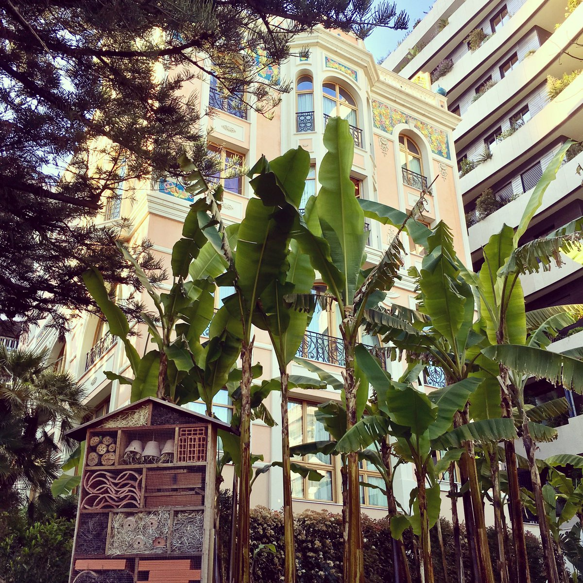Small #house for #insects... yes, you found it  #realestate #fun #funny #montecarlo #monaco<br>http://pic.twitter.com/qJBD7Xhoba